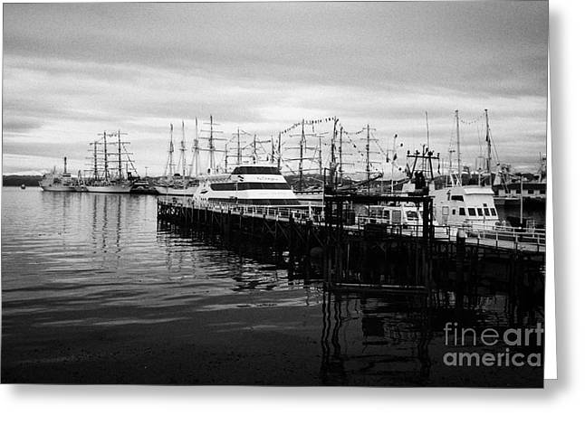 tourist scenic boat trip pier and commercial pier port of Ushuaia Argentina Greeting Card