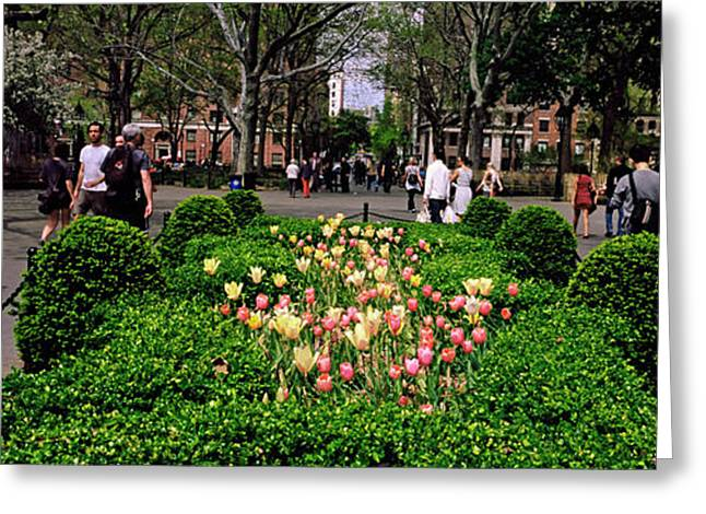 Tourists In A Park, Washington Square Greeting Card
