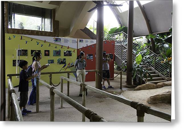 Tourists In A Queue At One Of The Exhibits Inside The Jurong Bird Park Greeting Card by Ashish Agarwal
