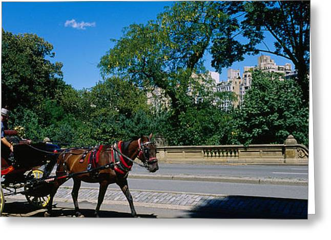 Tourists Traveling In A Horse Cart Greeting Card by Panoramic Images