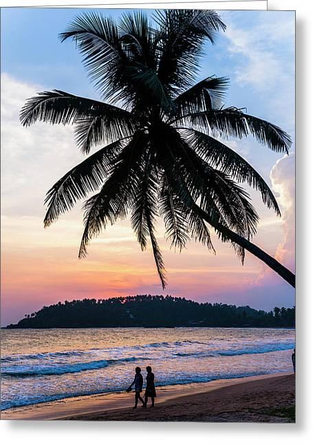 Tourists Under A Palm Tree On Mirissa Greeting Card by Matthew Williams-ellis