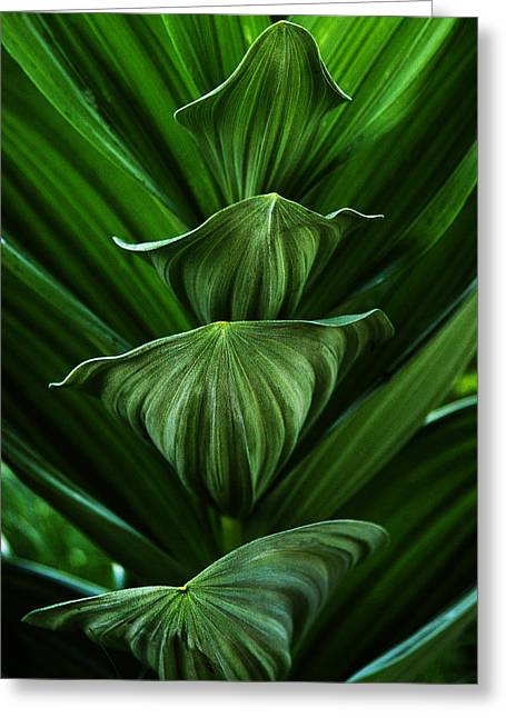 Tower Of Green Greeting Card by David Marr