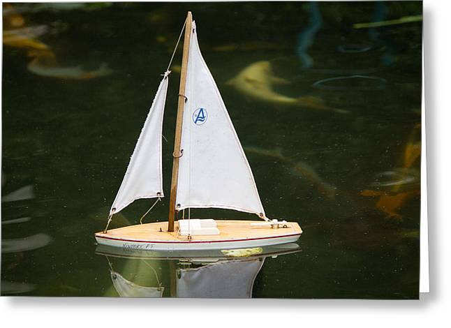 Toy Sailboat Greeting Card