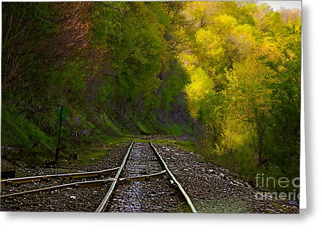 Track Through The Hillside  Greeting Card by Peggy Franz