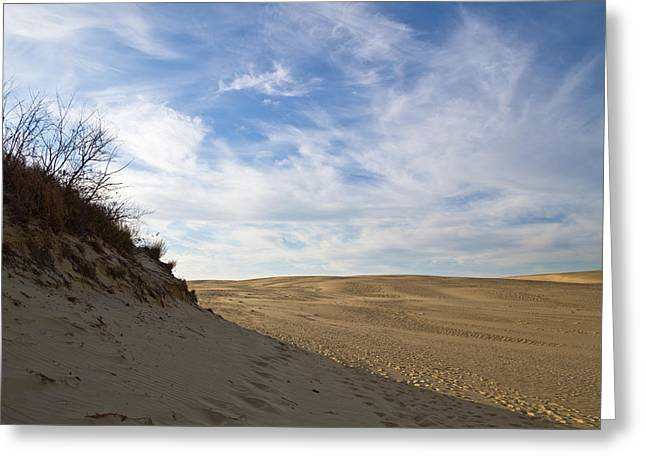 Greeting Card featuring the photograph Tracks In The Sand Trail by Gregg Southard