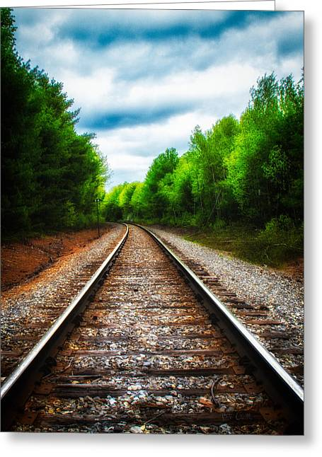 Tracks Through The Woods Greeting Card by Bob Orsillo