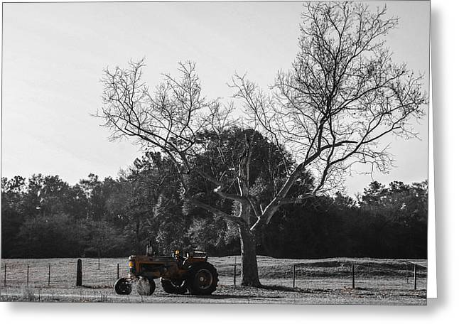 Tractor For Sale Greeting Card by Steven  Taylor