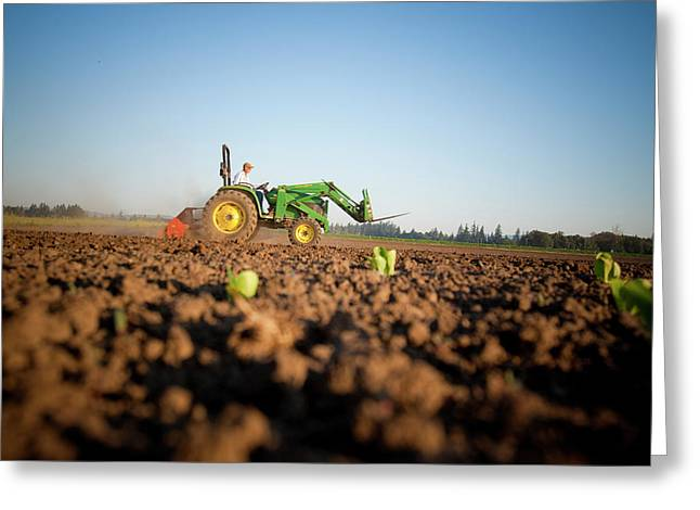 Tractor Plowing Field Greeting Card