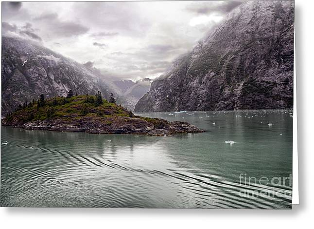 Greeting Card featuring the photograph Tracy Arm Passage by JRP Photography