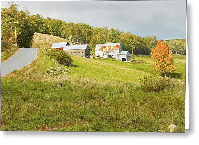 Traditional Maine Farm On Side Of Hill Canvas Poster Prints Greeting Card