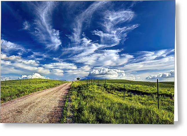 Trail Drive Road Greeting Card by Jean Hutchison