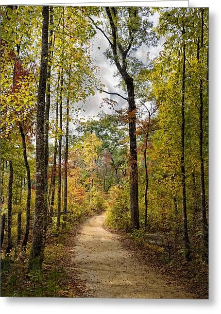 Trail In Autumn Greeting Card by Debra and Dave Vanderlaan