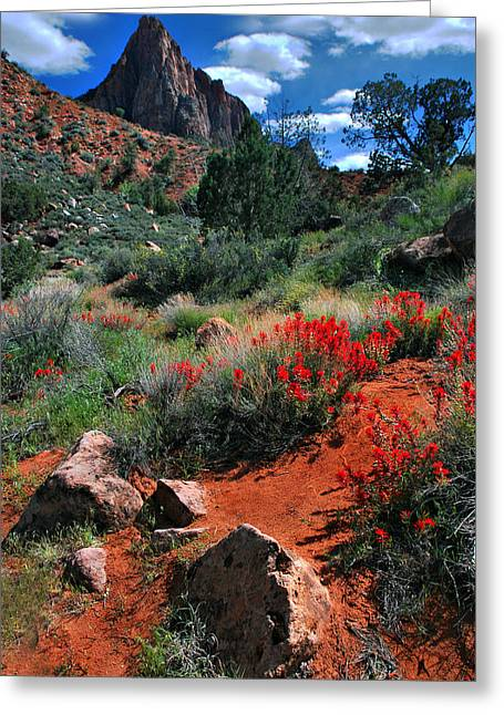 Trail To The Watchman Greeting Card