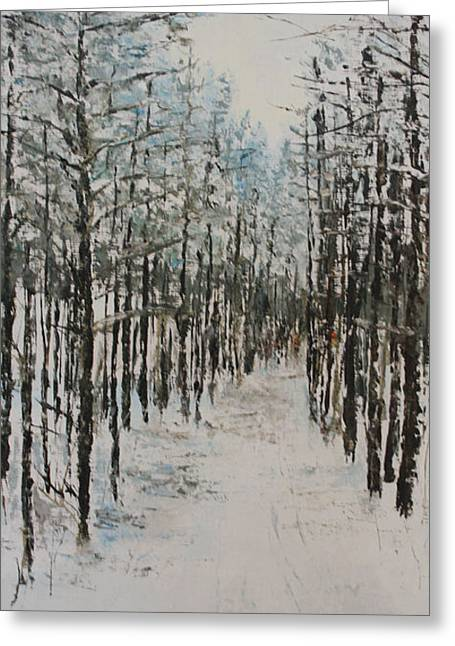 Trail To The Wood Lot Greeting Card by Steve Knapp