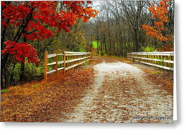 Trailing In Autumn Greeting Card