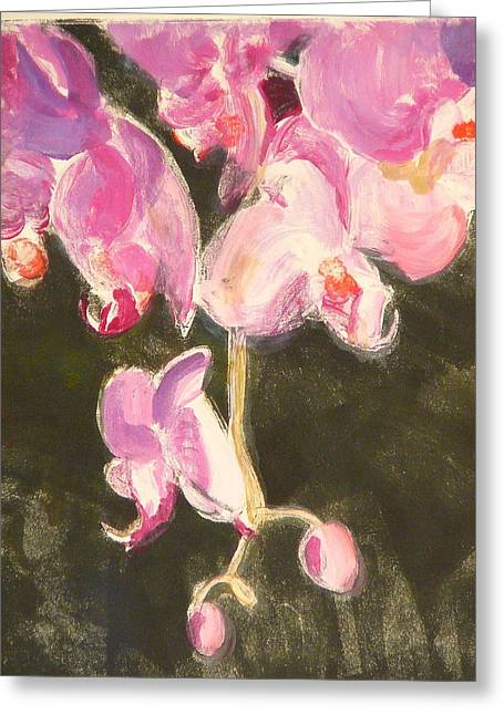 Trailing Phal Greeting Card by Valerie Lynch