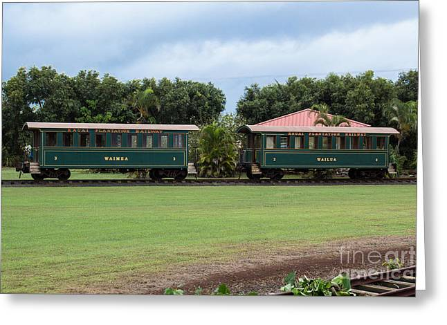 Train Lovers Greeting Card by Suzanne Luft