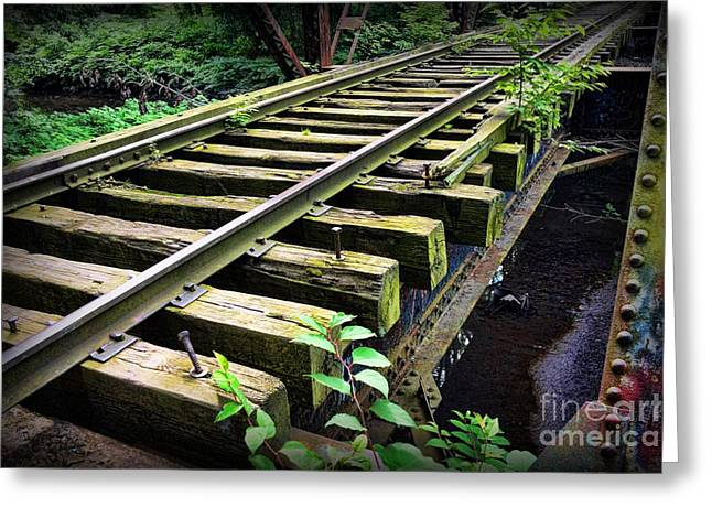 Train - Railroad Trestle Greeting Card by Paul Ward