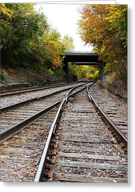 Train Tracks And Bridge In Autumn Greeting Card by Ellen Tully