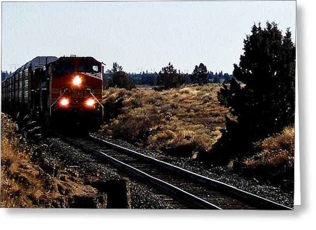 Train Tracks Greeting Card by Jennifer Muller