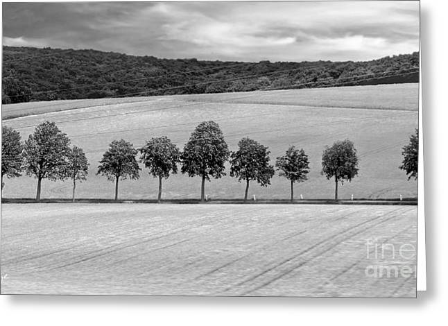 Train With A View Bw Greeting Card by Jennie Breeze