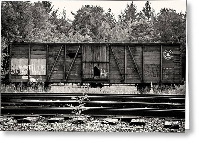 Trains Greeting Card by David Fox Photographer