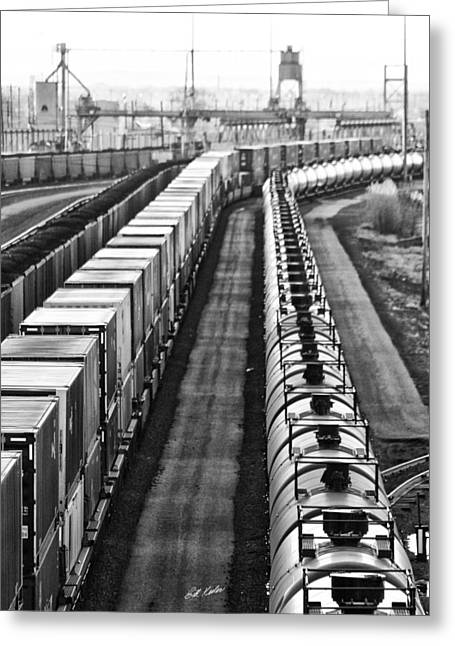 Greeting Card featuring the photograph Trains Stop For Servicing by Bill Kesler