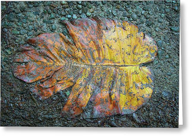 Greeting Card featuring the photograph Trampled Leaf by Britt Runyon