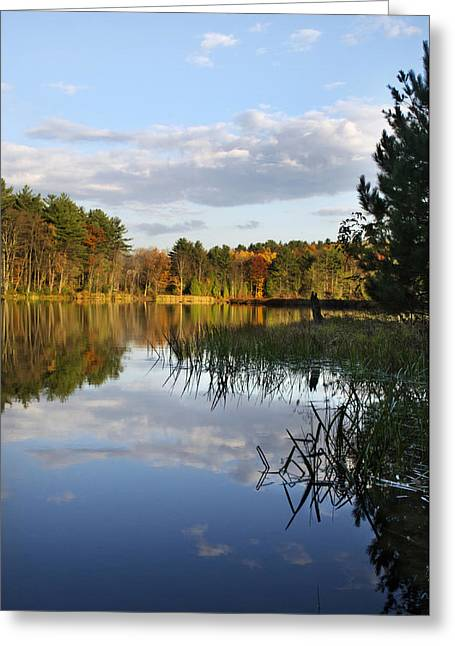 Tranquil Autumn Landscape Greeting Card by Christina Rollo