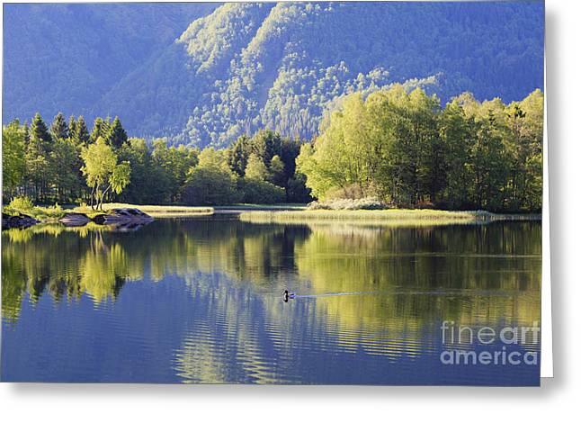 Tranquil Lake Greeting Card