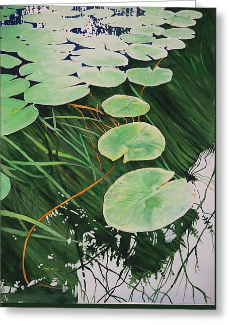 Tranquil Lily Pads Greeting Card