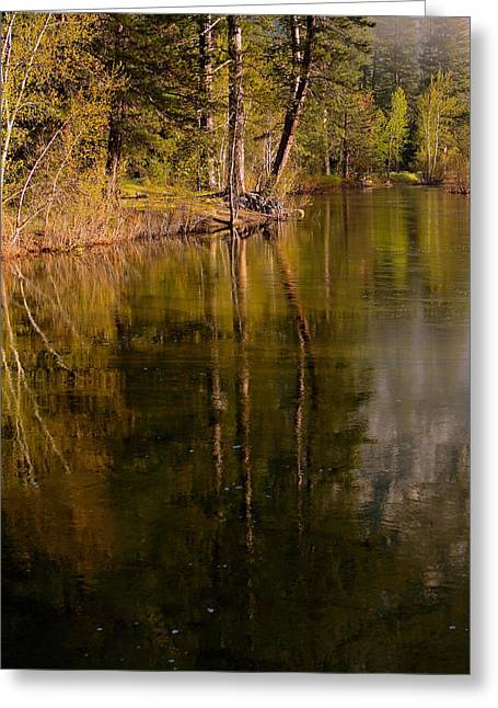 Tranquil Merced River Greeting Card by Duncan Selby