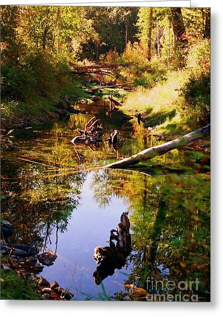 Tranquil Space Greeting Card by Kathy Bassett