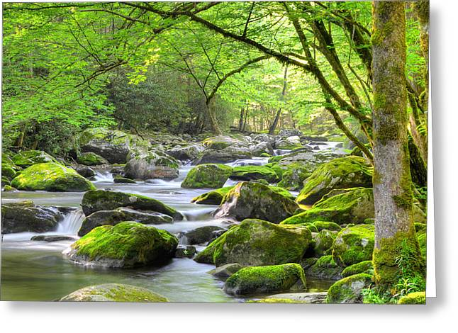 Tranquil Waters Greeting Card by Mary Anne Baker