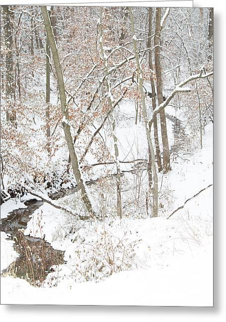 Tranquil Winters Creek Greeting Card