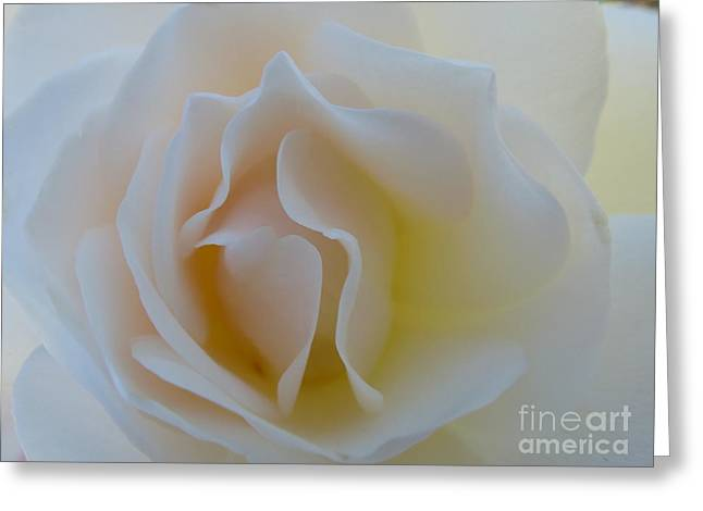 Tranquility  Greeting Card by Anat Gerards