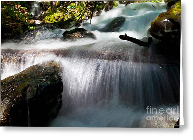 Tranquility  Greeting Card by Chris Heitstuman