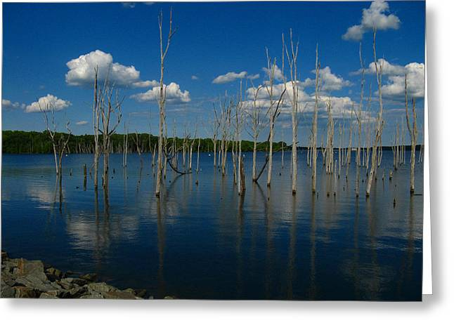 Greeting Card featuring the photograph Tranquility II by Raymond Salani III
