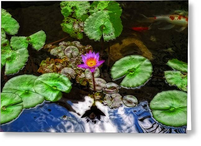 Tranquility - Lotus Flower Koi Pond By Sharon Cummings Greeting Card