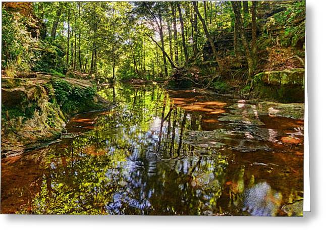 Tranquility Revisited Greeting Card