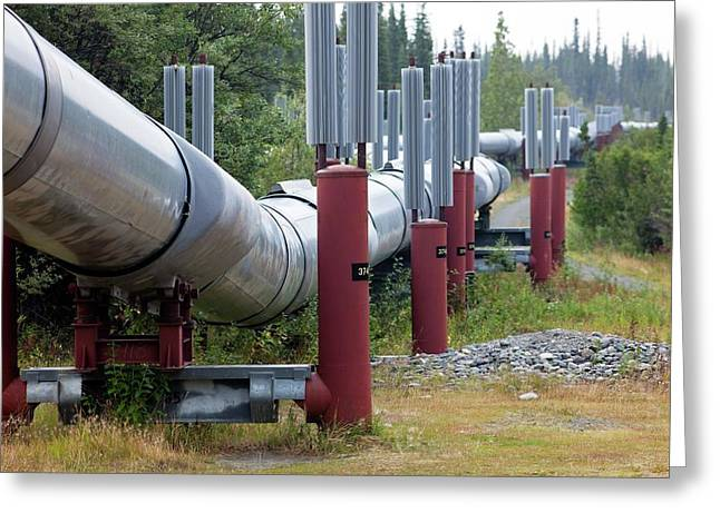 Trans-alaska Oil Pipeline Greeting Card