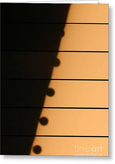 Transit Of Venus, 2004 Greeting Card