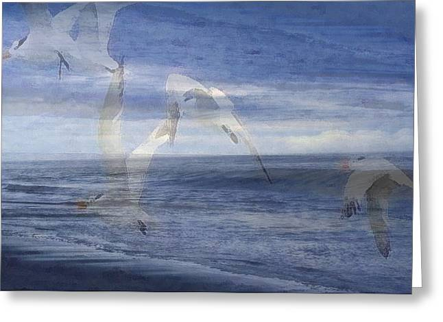 Transparent Flight Greeting Card by James Chesnick