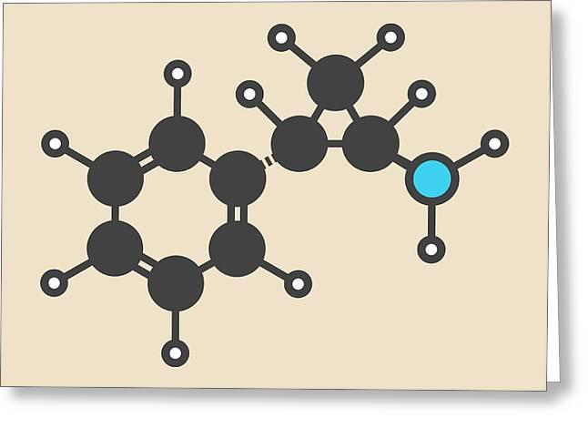 Tranylcypromine Drug Molecule Greeting Card by Molekuul