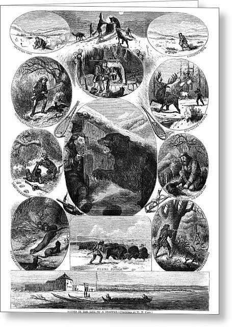 Trapper, 1868 Greeting Card by Granger