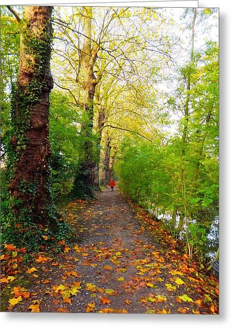 Traversee De L'automne Au Bord Du Canal De Seclin Greeting Card