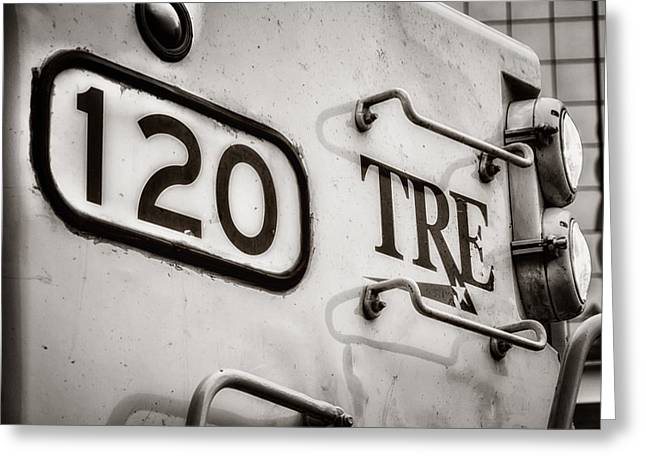 Tre 120 Greeting Card by Joan Carroll