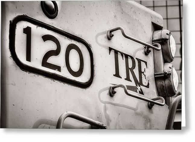 Tre 120 Greeting Card by Joan Carroll