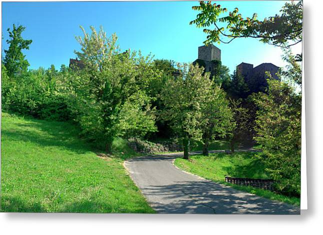Tree Along A Road, Caseneuve, Vaucluse Greeting Card by Panoramic Images