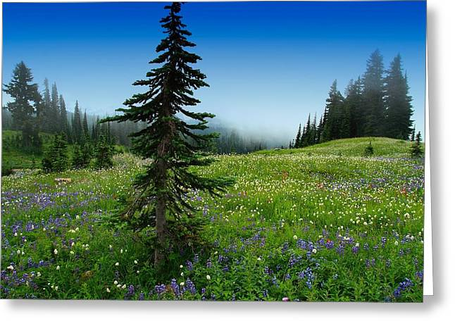 Tree Amongst Wildflowers Greeting Card
